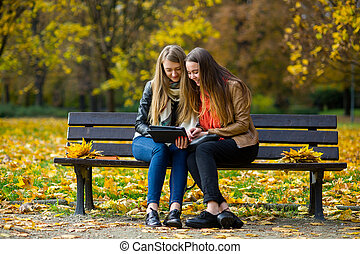 podzim, sedět, sluka, dva, kouzelný, časný, fall., srdečný, lavice, park.