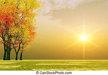 podzim, západ slunce
