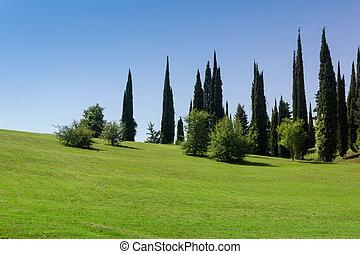 Poggibonsi Tuscany Italy