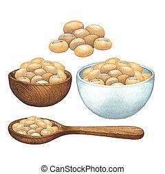 poignée, soybeans., cuillère bois, aquarelle, bols
