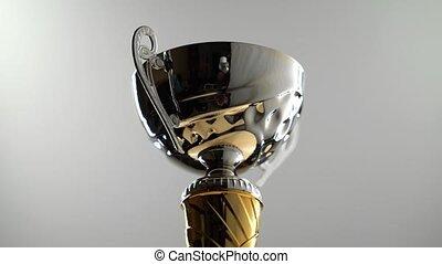 poignées, tasse, tourne, soutien, trophée, noir, doré