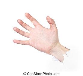 poinçons, papier, mâle, main