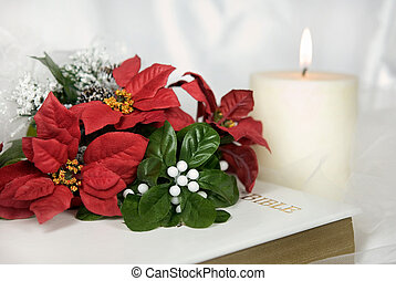 Poinsettia Bridal Bouquet