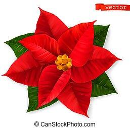 Poinsettia, Christmas Star. 3d realistic vector icon