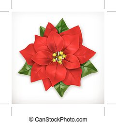 Poinsettia, Christmas Star vector icon, isolated on white background