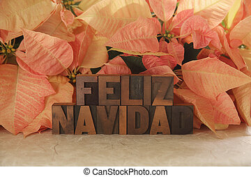 the words Feliz Navidad with pink poinsettias in the background