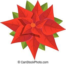 Poinsettia icon, cartoon style