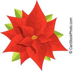 Poinsettia plant icon, cartoon style