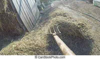 Point of view of man with hay fork shoveling hay in a barn at the country side