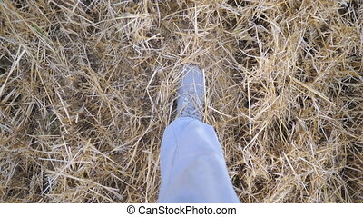 Point of view to legs of man going and stepping on dry...