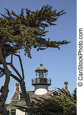 Point Pinos Lighthouse and Monterey Cypress
