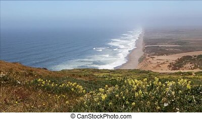 Point Reyes Lupines and Seacoast Loop ? California - Waves...