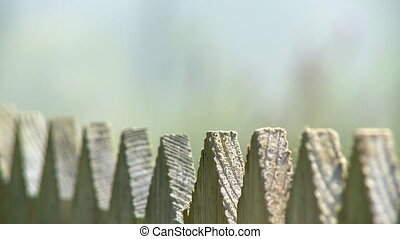 Pointed Peaks on Wooden Fence - Steady, extreme close up...