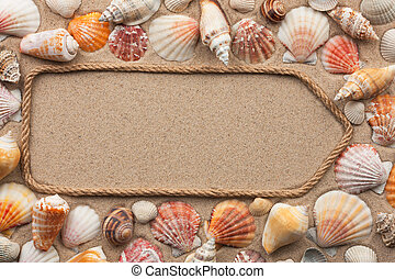 Pointer, sign made of rope among the seashells on the sand. With a place for your text.