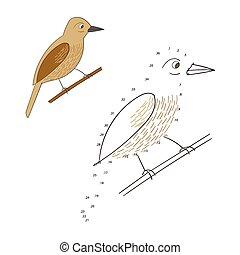 points, illustration, jeu, vecteur, relier, oiseau