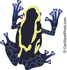 Poison Dart Frog - vector illustration of a poison dart frog...