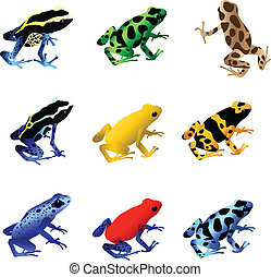 A collection of 9 different species of poison dart frogs.