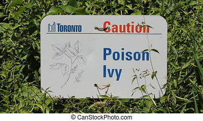 Poison Ivy sign in Toronto, Canada. - Sign warns of Poison...