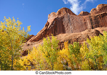 Poison Spider Mesa in the Fall