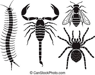 Poisonous insects icons set. Vector Illustrations.