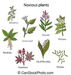 Poisonous plants collection.
