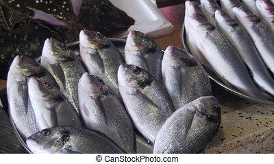 poisson frais, compteur, marché, mer