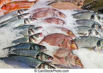 poisson frais, marché