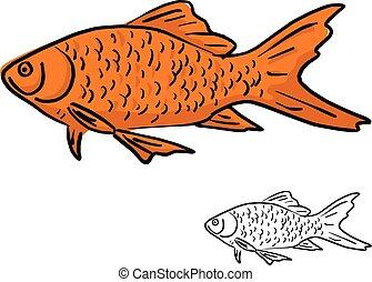 Poisson rouge croquis fond blanc - Croquis poisson ...