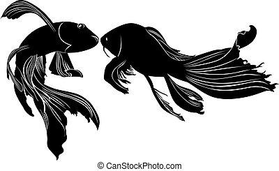 poisson rouge, carpe, vecteur