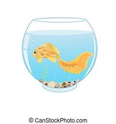 Poisson rouge aquarium bleu plat illustration objets for Aquarium plat