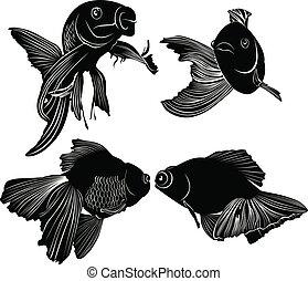 poisson rouge, noir, ensemble, silhouette, isolé