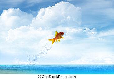poisson rouge, sauter, ciel, haut, fond