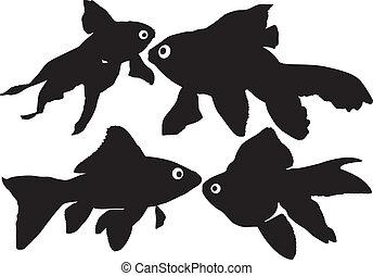 poisson rouge, silhouettes, vecteur