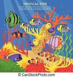 poisson tropical, mer, fond