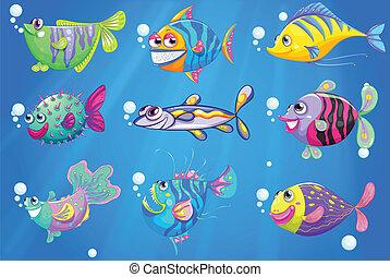 poissons, neuf, mer, coloré, sous