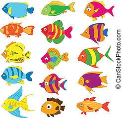 poissons tropicaux, ensemble
