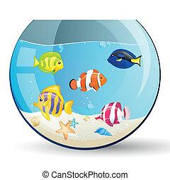 poissons, vecteur, aquarium, coloré