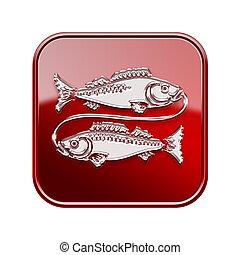 poissons, zodiaque, icône, rouges, isolé, blanc, fond