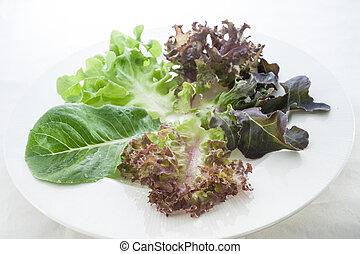 pojęcie, jedzenie, sałata, zdrowy, warzywa, świeży