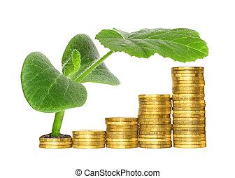 pojęcie, symbolizing, finansowy, wzrastać