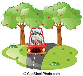 pojke, drivande, in, röd bil, vägen
