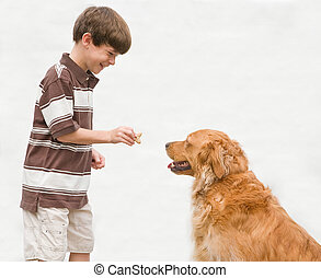 pojke, ge sig, hund, a, belöna