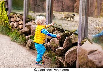 pojke, litet, zoo, djuren, hålla ögonen på