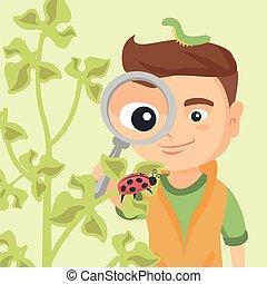 pojke, titta glas, ladybug., genom, förstorar