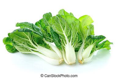 pok, choi, vegetal, aislado, blanco, plano de fondo