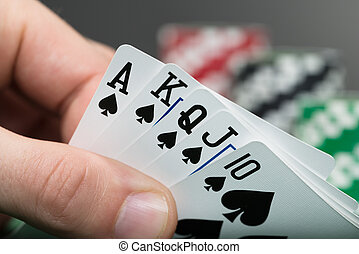 Poker Player Hand Holding Cards