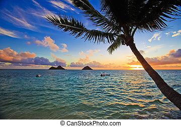 pokojný, východ slunce, v, lanikai, havaj