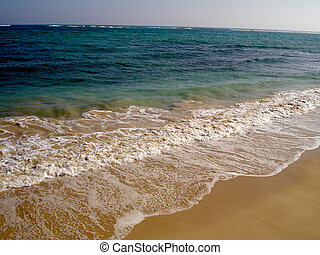 pokojowy ocean