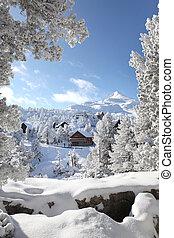 pokryty, śliczny, śnieg, dom
