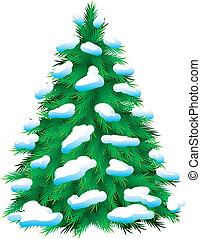 pokryty, fur-tree, zielony, śnieg